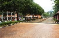 要达到什么样的水平,才有可能被马来西亚国民大学录取?