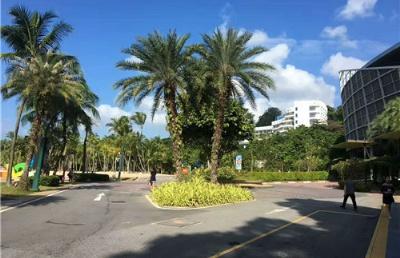 与国外名牌大学合作,新加坡私立大学强的不止这一点~