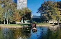 纽曼大学真的那么水嘛?