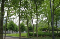 欧洲十大名牌商学院丨里昂高商
