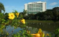 努力点可以考上马来亚大学吗?