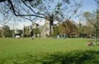 加拿大留学生2021学费报告出炉:安省最高!