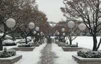通往世界名校韩国外国语大学有哪些条件?
