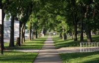 加拿大留学,哪所大学的奖学金更加吸引你?