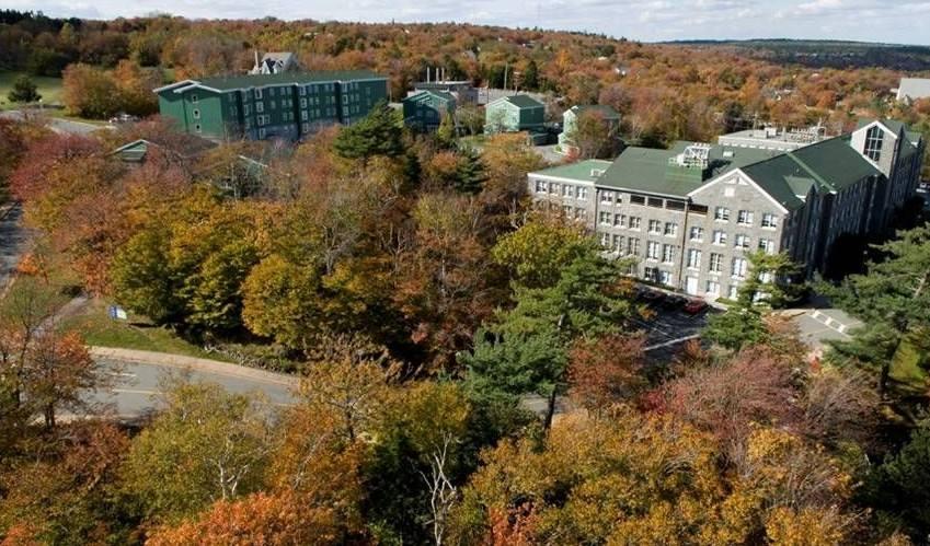 加拿大卡尔顿大学入学奖学金