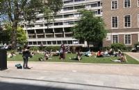 如何看待威斯敏斯特大学的本科生?