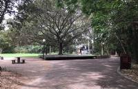 为什么南十字星大学是世界名校,却很容易进?