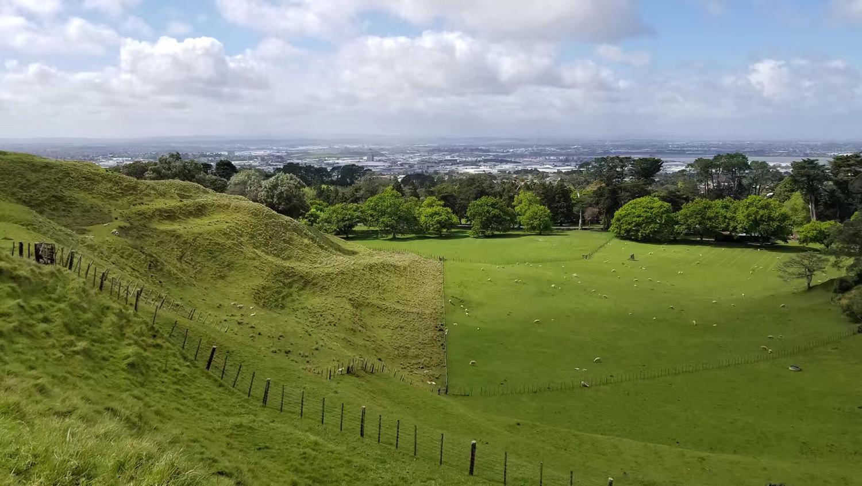 新西兰南方理工学院新生攻略