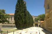 请问西澳大学排名是多少?想去西澳大学读研究生