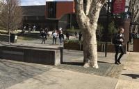 麦考瑞大学完成学业回国,前景如何?