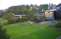 该不该去莫纳什大学马来西亚校区读本科?