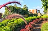 高中生如何往哪些方面努力考罗格斯大学新伯朗士威校区?
