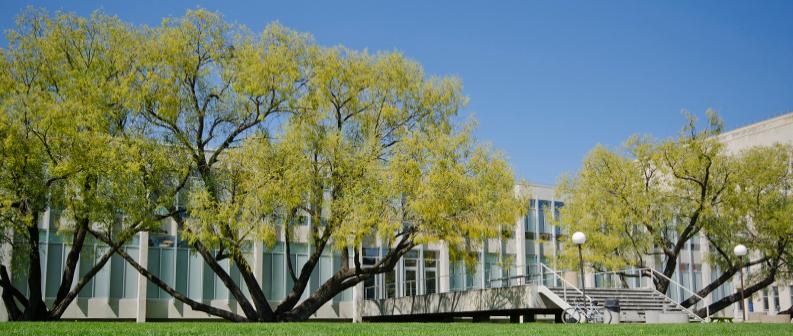 申请加拿大大学,怎样更容易受到加拿大名校的青睐?