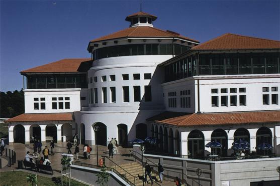 新西兰梅西大学奖学金怎么申请