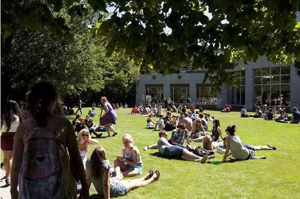 高考完高考成绩不理想去新西兰读本科