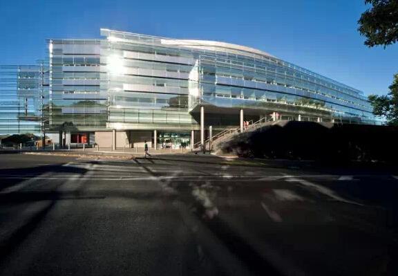 2019年奥克兰大学理学院开设了哪些新专业?