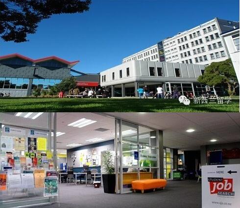 高考完高考成绩好去新西兰读本科