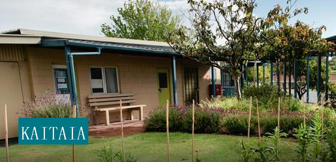新西兰北方理工学院课程设置