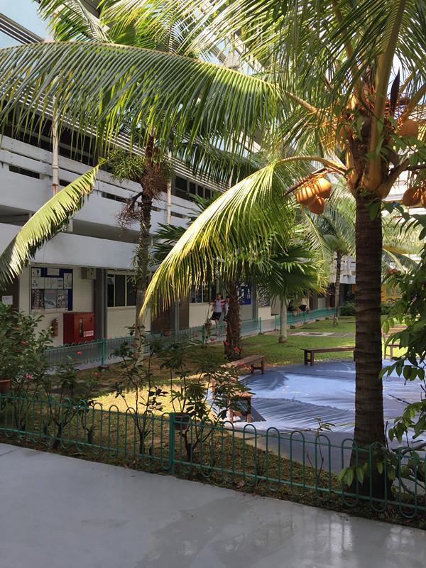 倪燕华老师:留学新加坡,如何做到准确的提前咨询?