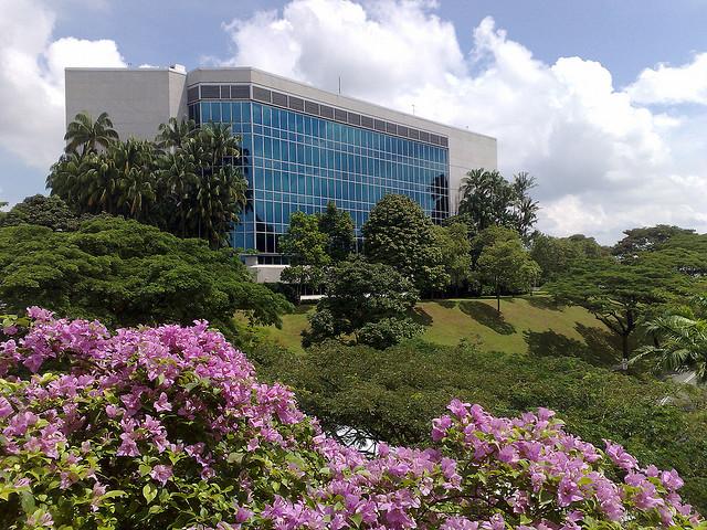 去新加坡留学,本科文凭的含金量如何?