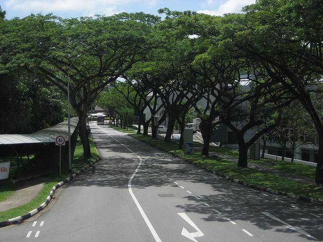 高考学子留学新加坡毕业回国不用愁,新加坡正式实现留学生学历学位全面实时在线快捷认证了!