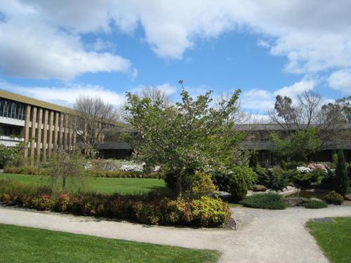 想要申请澳大利亚大学?这4个加分项值得参考!