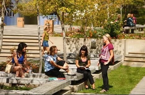 新西兰传媒硕士院校