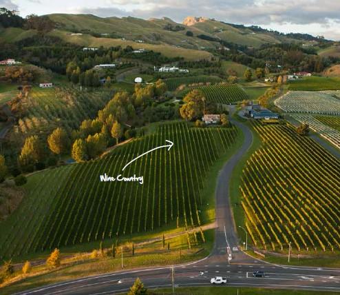 新西兰东部理工学院葡萄酒GD