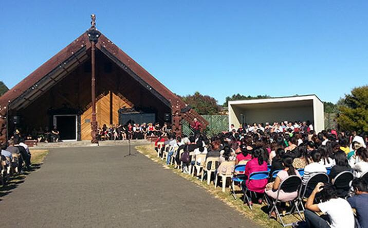 新西兰高中课程类型