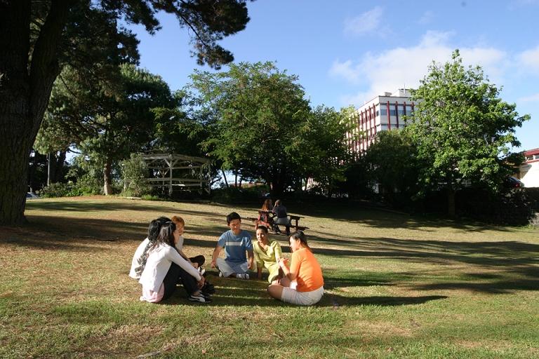 新西兰大学没高考分数留学