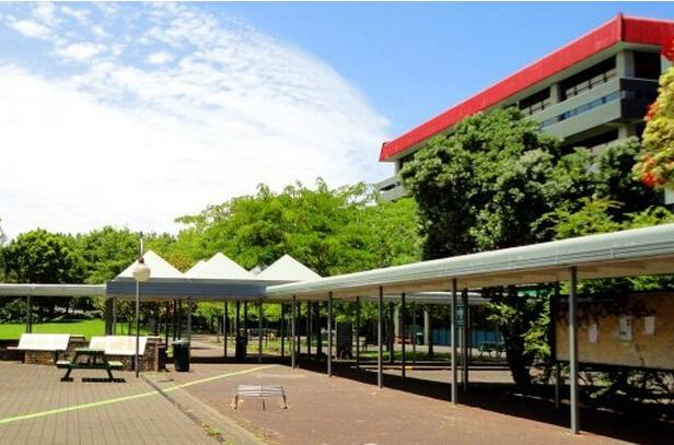 新西兰unitec理工学院护理本科