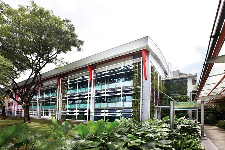 怎么办理新加坡学生签证延期?
