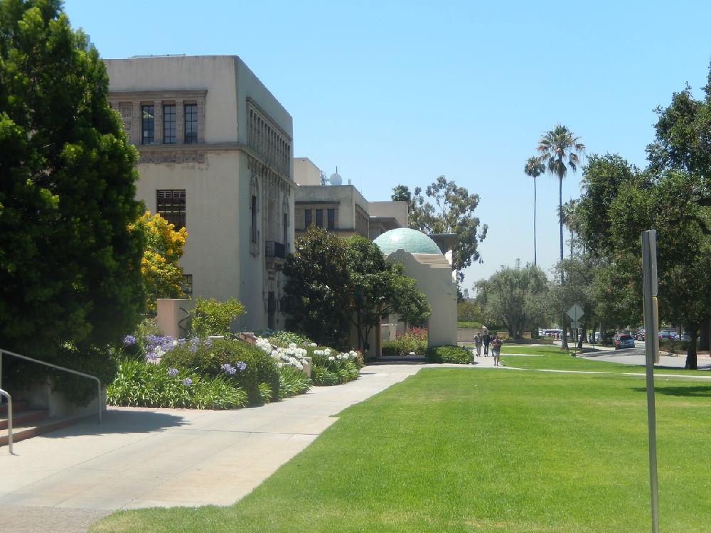 加州理工学院回国就业率