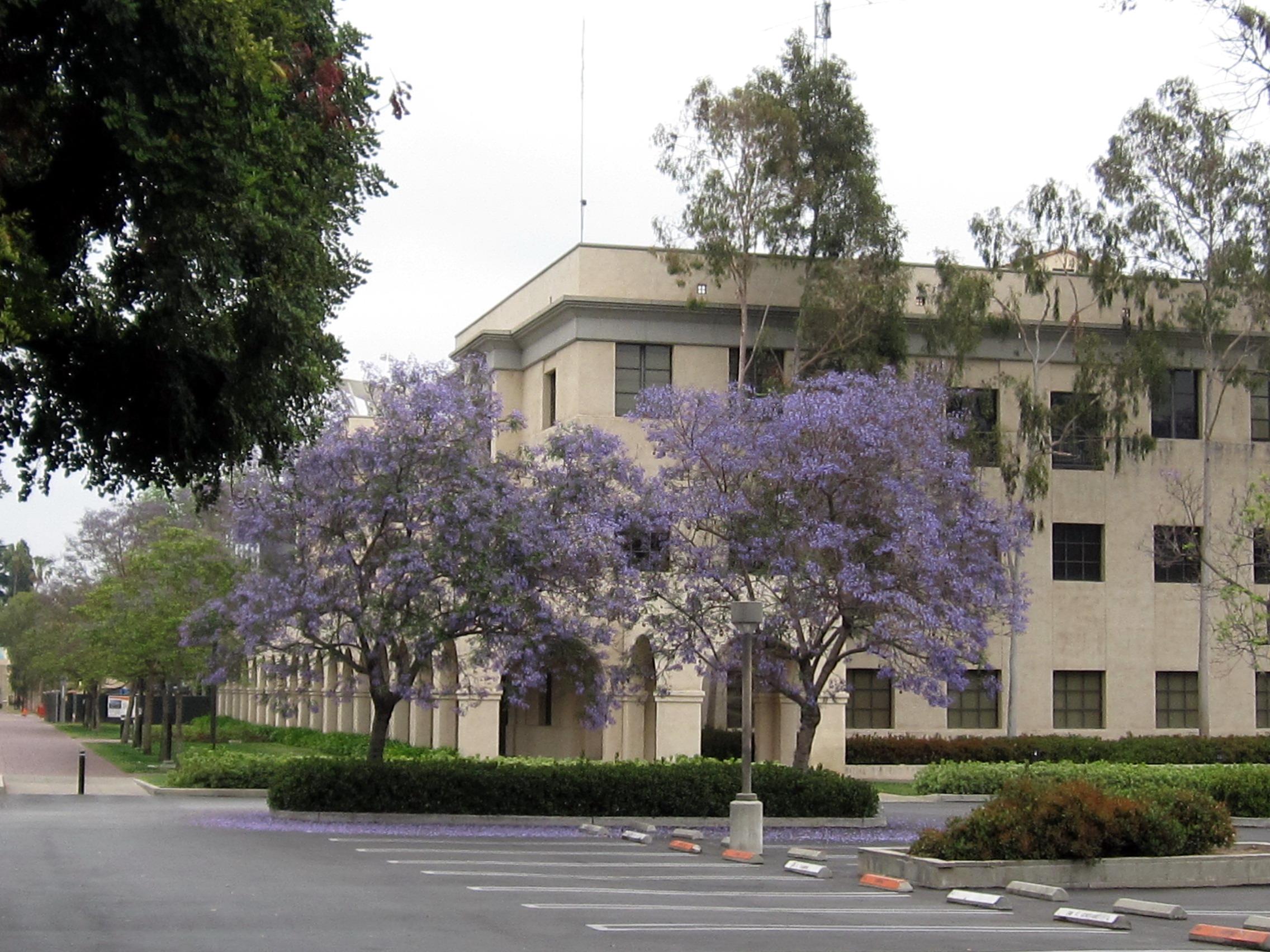 加州理工学院特色