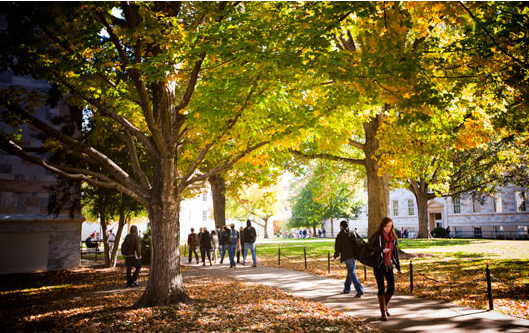 高中生想考埃默里大学一定要GPA成绩吗?