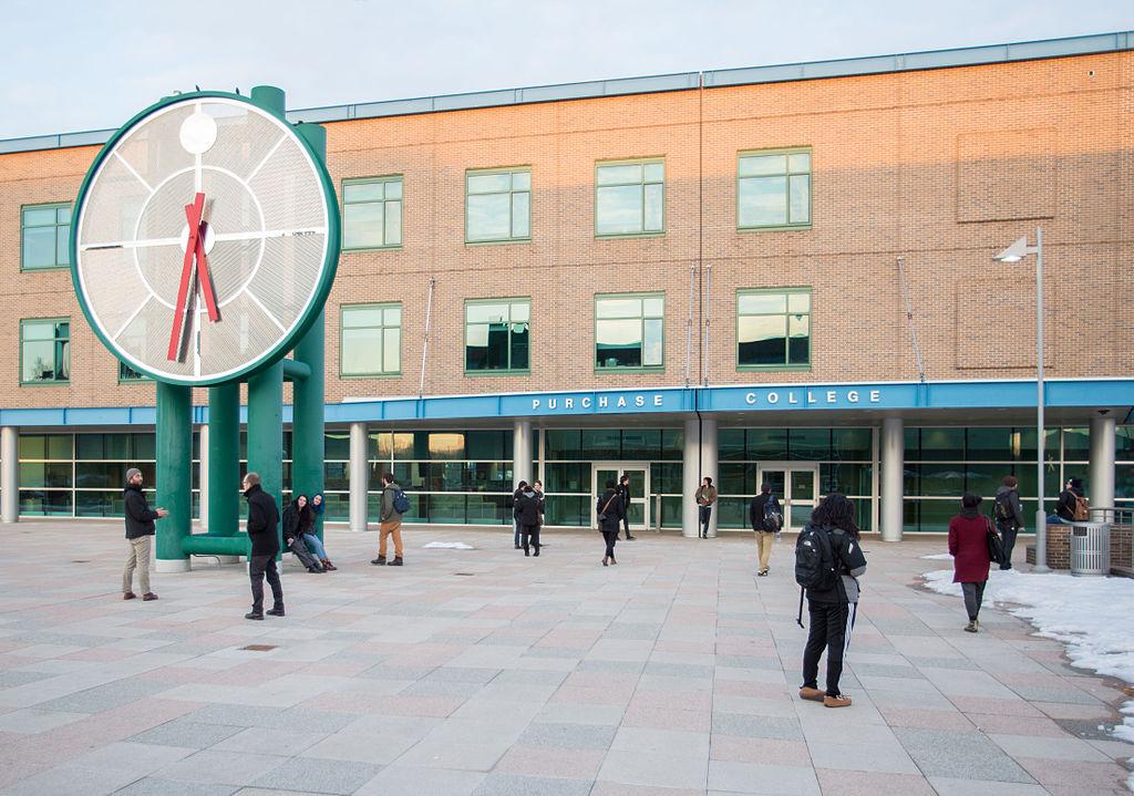 美国纽约州立大学