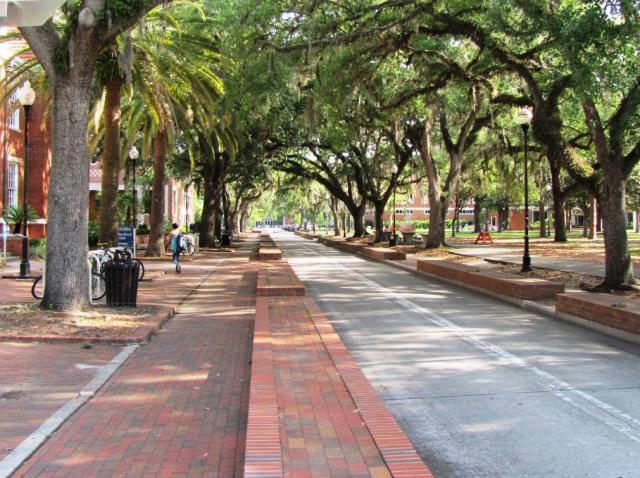 佛罗里达大学开设哪些研究生专业?