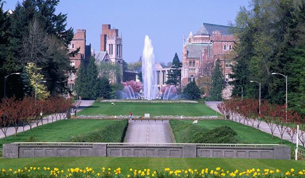 华盛顿大学就业优势