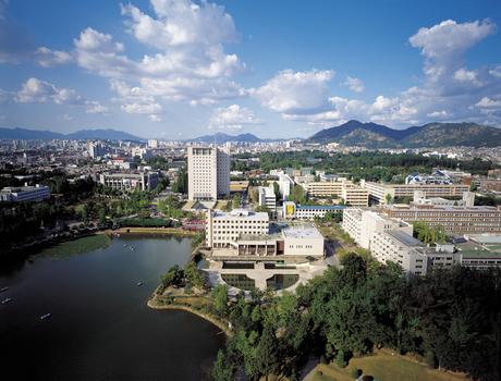 韩国西江大学各项排名
