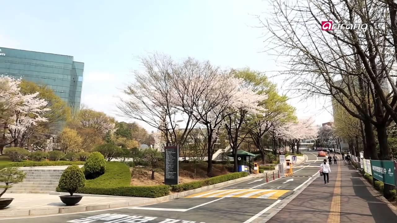 2018年韩国西江大学语学堂申请