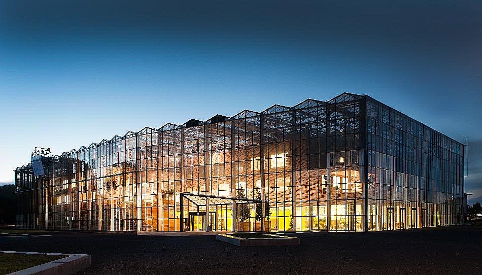 荷兰职业农学院