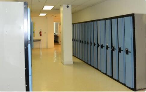莱姆顿学院多伦多校区