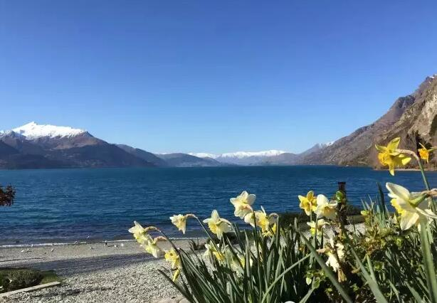 新西兰留学签证需要什么