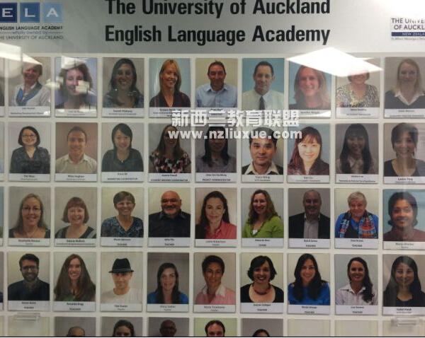 新西兰大学高考分数申请要求