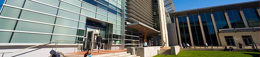 新西兰奥塔哥大学牙科技术就业方向