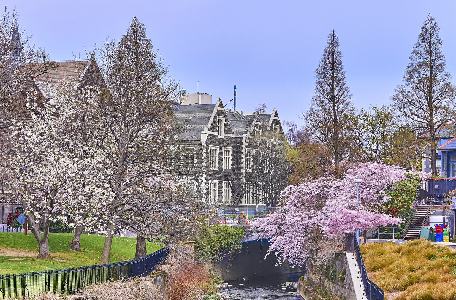 奥塔哥大学申请条件