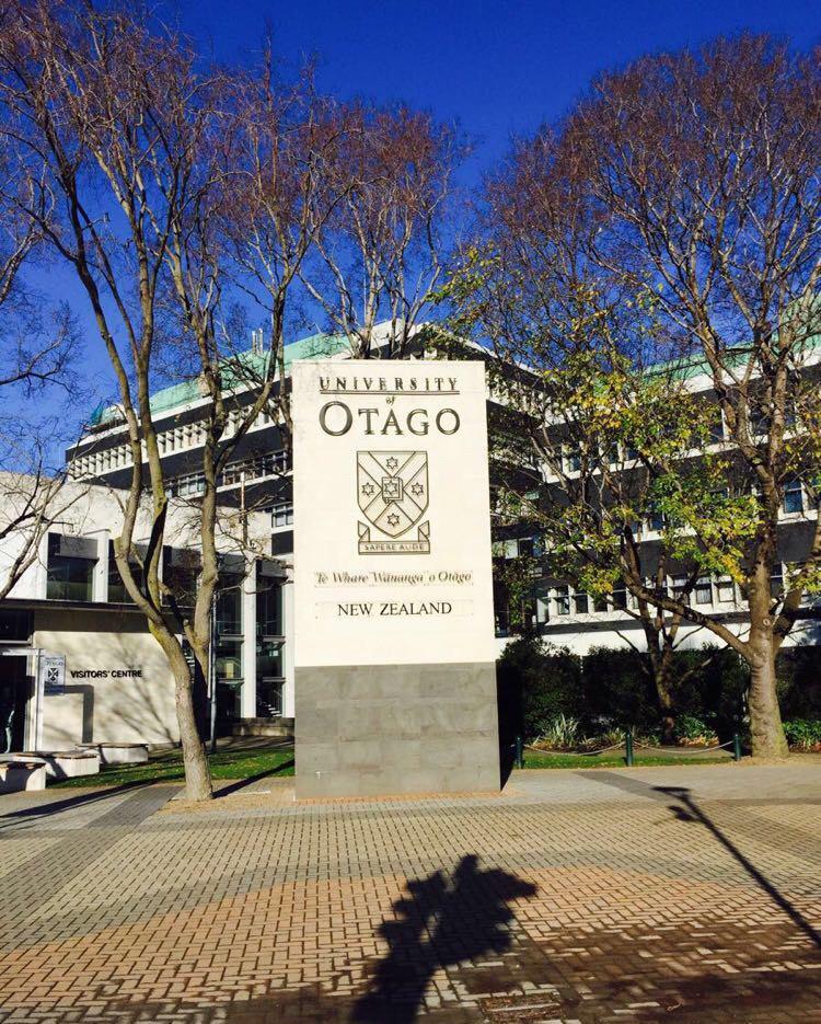 奥塔哥大学心理学专业就业优势