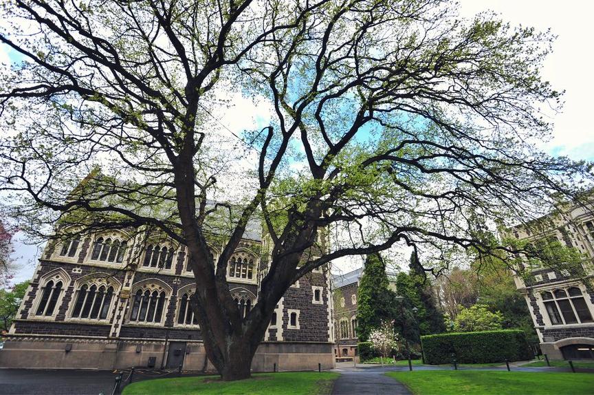 奥塔哥大学四大学院