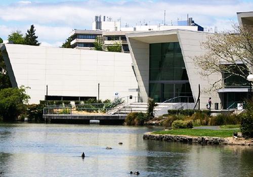 怀卡托大学国际排名