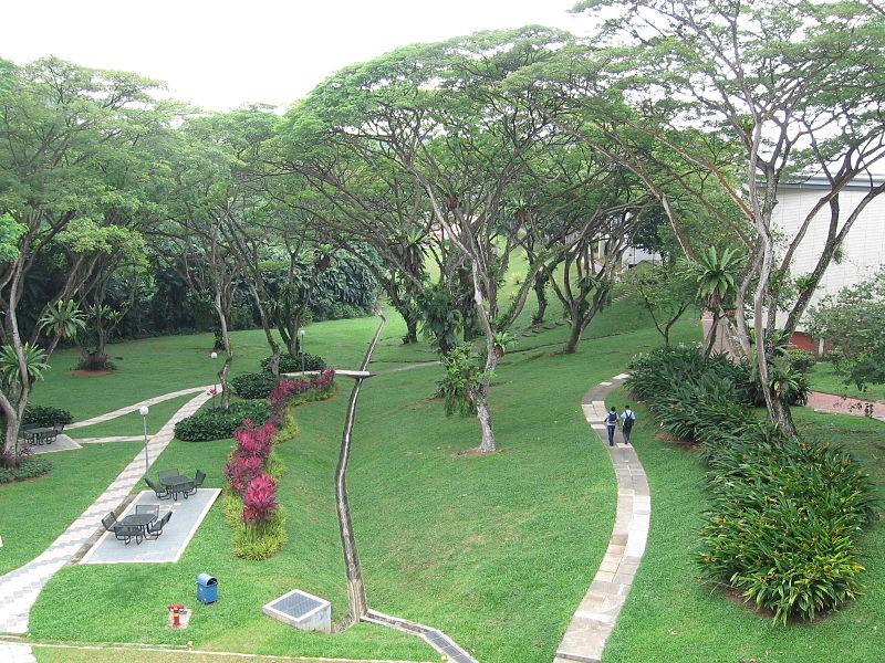 新加坡留学避坑指南